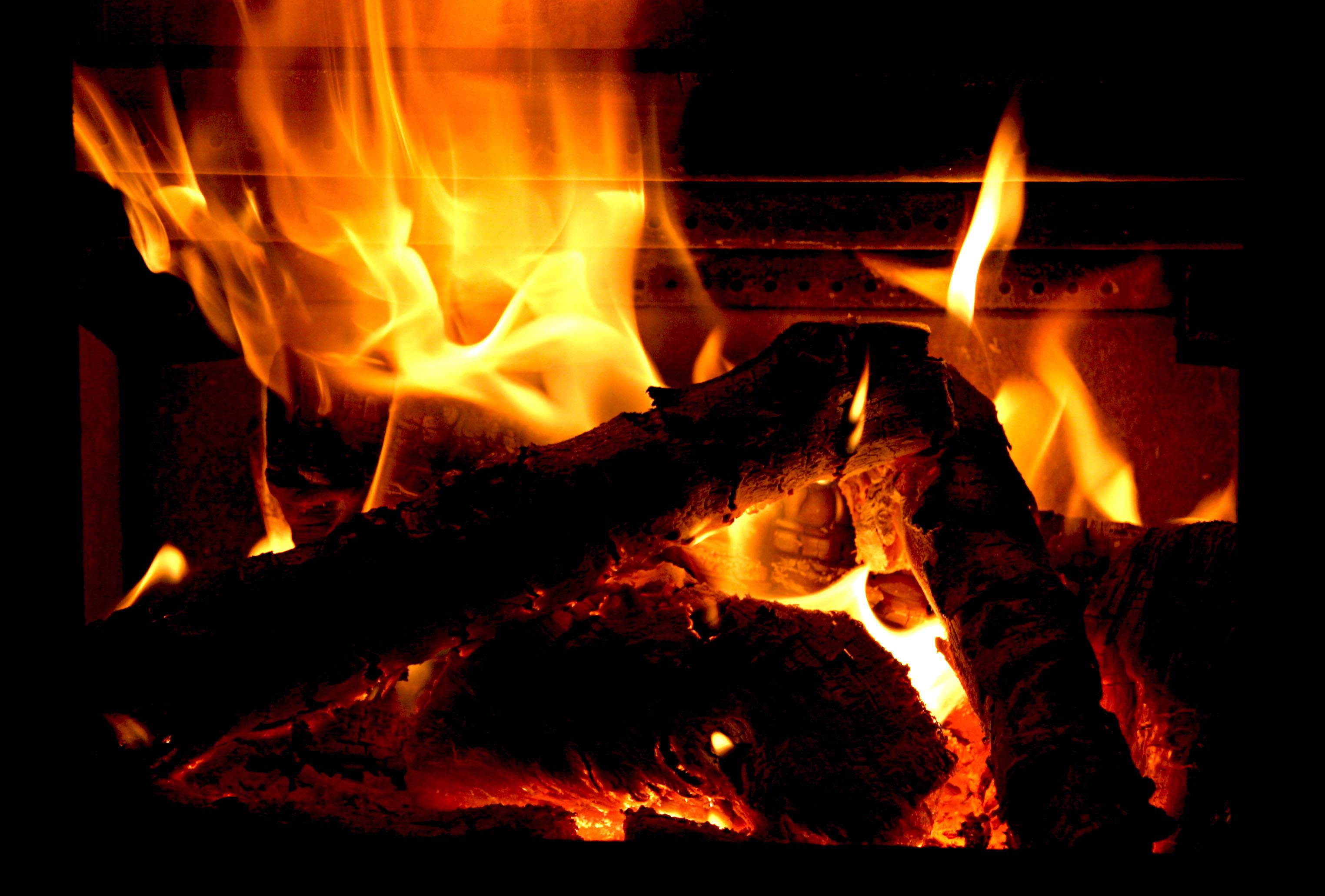 Log Fire Mind Bleach